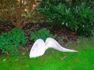 turrel garden 005