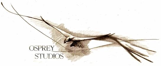 Osprey Studios 2013