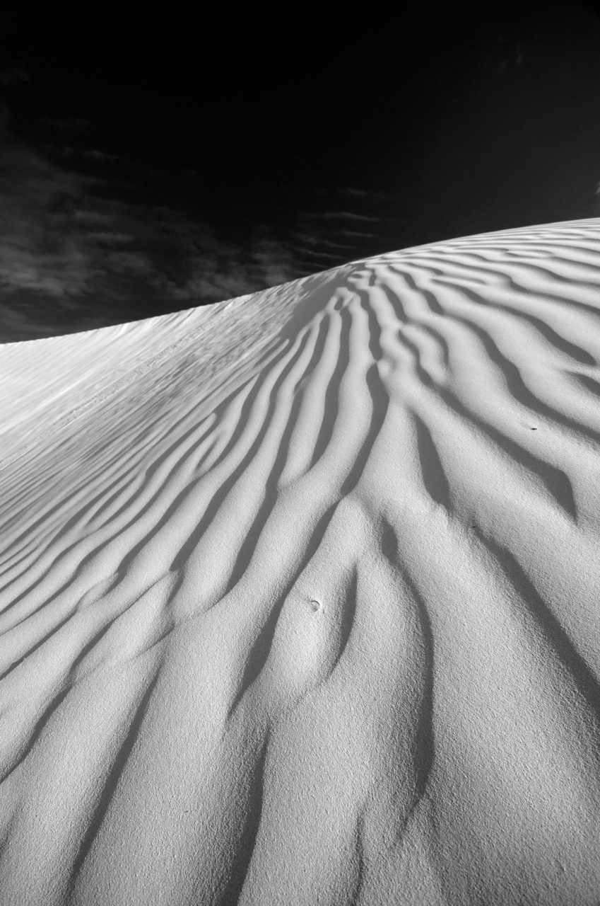 Stephen Foote; Dunes