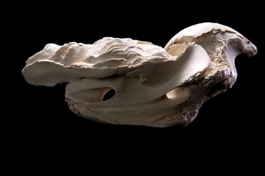 Leviathan V, 2015, 11.5cm H x 25cm L x 9.5cm W, ceramic.