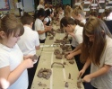 Mount Street Junior School, Years 3 and 4 making a model of a town that cares for and supports it's Military members.